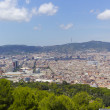 City of Barcelona, Spain — Stock Photo #6366763
