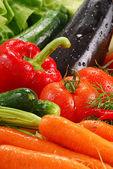 Composição com vegetais crus — Foto Stock