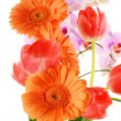 Flower bouquet — Stock Photo #5569611