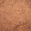 Stock Photo: Cracked soil