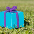 Giftbox — Stock Photo #5406654