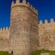 Royalty-Free Stock Photo: Walls of Avila