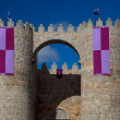 Walls of Avila — Stock Photo #5411302