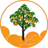 Orange tree — Stock Vector
