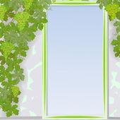 Grape door framework — Stock Vector