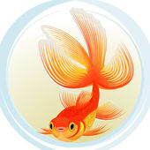 Gold fish — Stock Vector