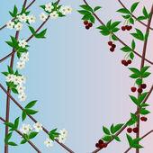 Cherry framework — Stock Vector
