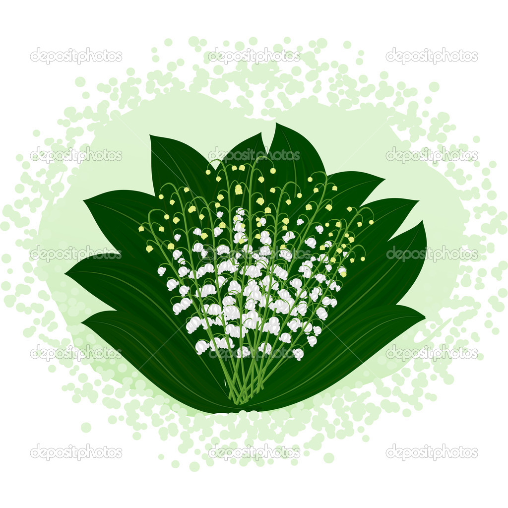 Gentle bouquet of lilies of the valley — Stock Vector #5481347