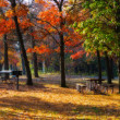 High Dynamic Range image of a campsite. — Stock Photo #5442874