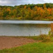 HDR of Lake Alice. — Stock Photo