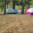 Camping and tents in the park — Stock Photo
