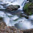 River Rapids — Stock Photo #5443957