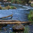 Beautiful River Stream — Stock Photo