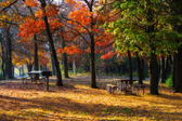 High Dynamic Range image of a campsite. — Stock Photo