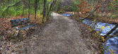 Hdr で森の中で落書きベンチ — ストック写真