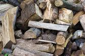 Pile of uncut firewood — Stock Photo