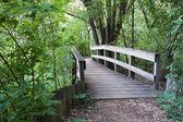 Puente en el bosque — Foto de Stock