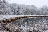Icy Winter Landscape — Stock Photo