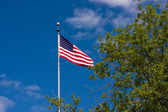 American Flag. Stars and Stripes — Stock Photo