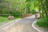 Bridge at the Park — Stock Photo