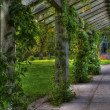 Stock Photo: Trellis in park