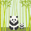 Pandas Eating Bamboo — Stock Vector #5408197