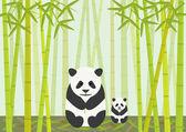 Pandas Eating Bamboo — Stock Vector