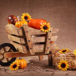Wooden wheelbarrow decoration — Stock Photo