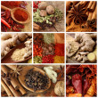Spices collage — Foto de stock #5445299