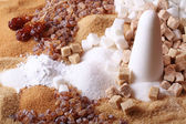 Various kinds of sugar — Stock Photo