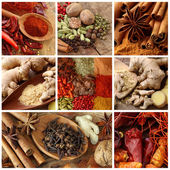 Spices collage — Stock Photo