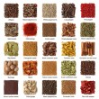 Indian spices collection - Stockfoto