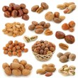 Nuts collection — Stock Photo #5451752