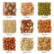 Nuts collection with titles — Stock Photo