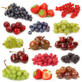 Fresh berries collection — Stock Photo