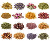Flower and herbal tea collection — Stock Photo
