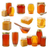 Honey collection — Stock Photo