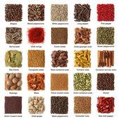 коллекция индийских специй — Стоковое фото