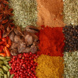 Various spices close up - Foto de Stock