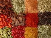 Various spices close up — 图库照片