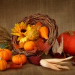 Cornucopia with pumpkins — Stock Photo #5567397