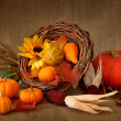 Stock Photo: Cornucopiwith pumpkins