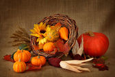 Cornucopia with pumpkins — Stock Photo