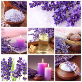 Lavender spa collage — Stock Photo