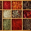 Assortment of peppercorns and chili — Stock Photo #6028070