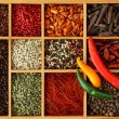 Assortment of peppercorns and chili - Stock Photo