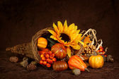 Cornucopia with pumpkins — 图库照片