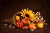 Cornucopia with pumpkins — Stock Photo