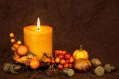 Autumn candle — ストック写真