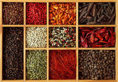 Assortment of peppercorns and chili — Stock Photo
